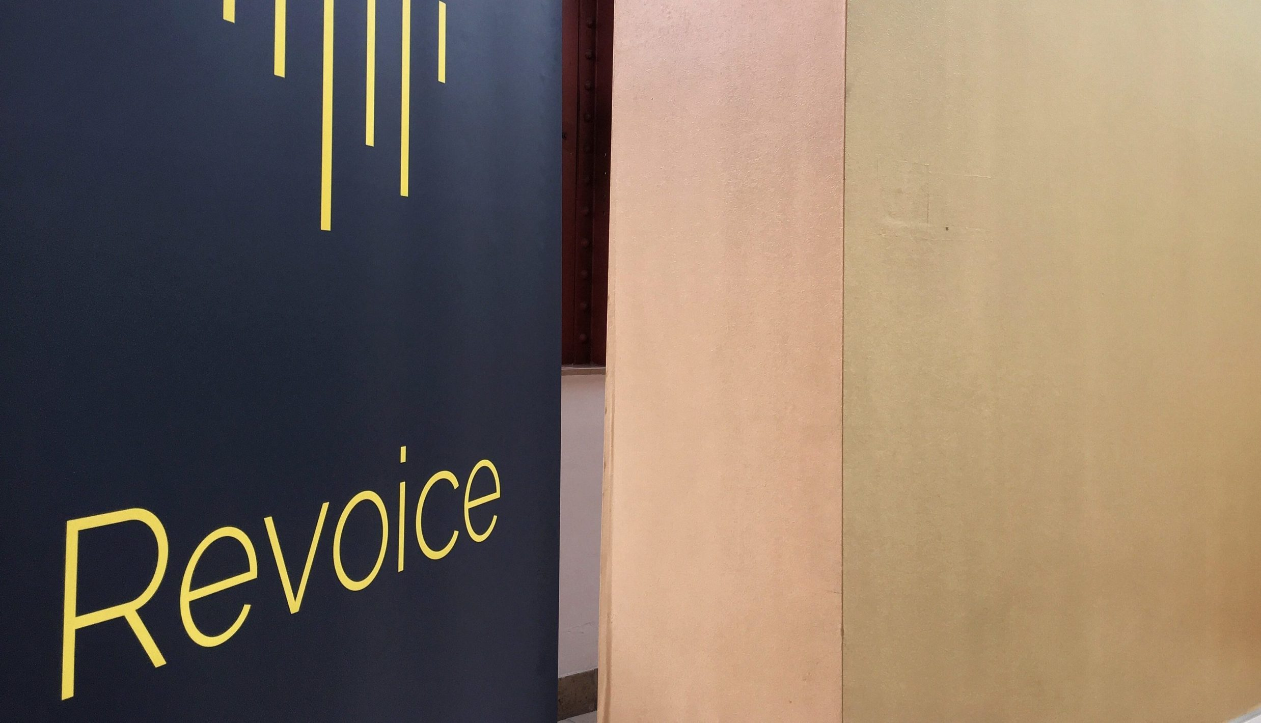 Revoice 2019: So Much to Learn and Love